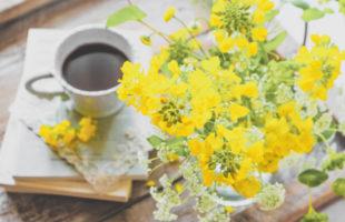 おうちコーヒーで花見はいかが